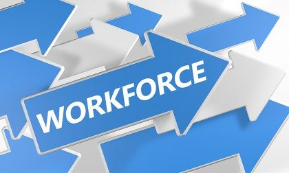 employment websites