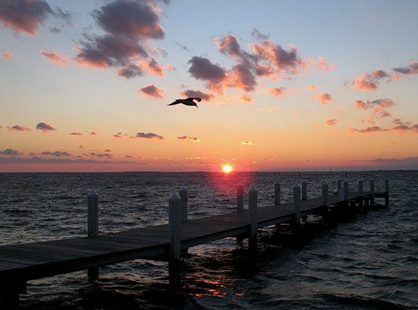 ChesapeakeBay